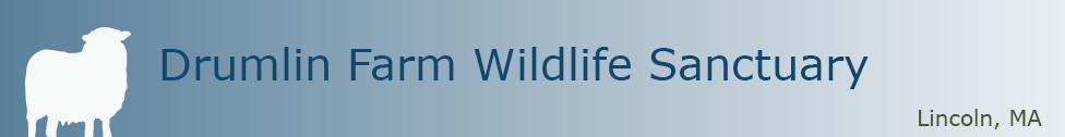 drumlin-farm-wildlife-sanctuary